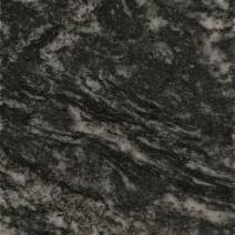 negro boreal